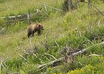 Summer exploration, discovering national parks 150705-F-SK304-572.jpg