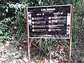 Taman Negara National Park 20190711 105147.jpg