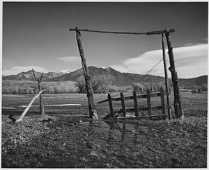 Taos County, New Mexico - Taos Mountain from Los Cordovas, 1941.