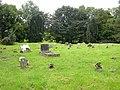 Tassagh Interdenominational Cemetery - geograph.org.uk - 2079840.jpg