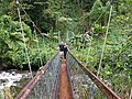 Taveuni, Fiji, bridge over river.jpg