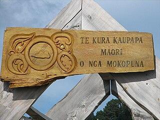 Kura Kaupapa Māori Māori-language immersion schools