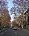 Tehran 25.11.2009 12-10-15.jpg