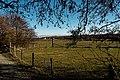 Texel - Maartenhuis - Nature Path 'Alloo' - View SE.jpg
