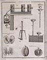 Textiles; spinning machines and parts of a cotton plant. Eng Wellcome V0024074.jpg