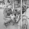 The British Army in North Africa 1944 NA13092.jpg
