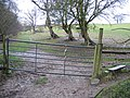 The Clwydian Way-Taith Clwyd - geograph.org.uk - 309563.jpg