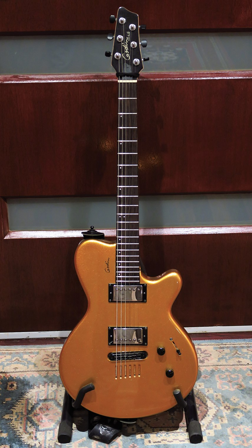 The 2004 model Godin LG Hmb with twin humbuckers
