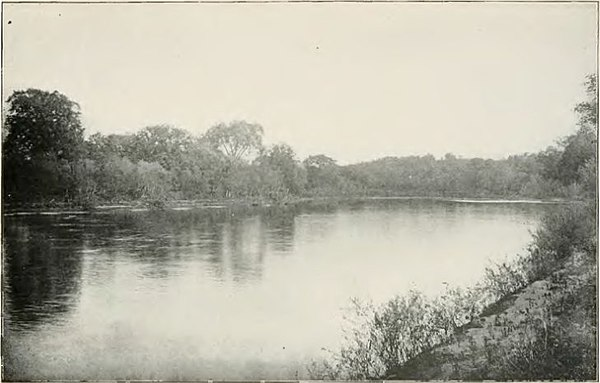 The Iowa River - History of Iowa.jpg
