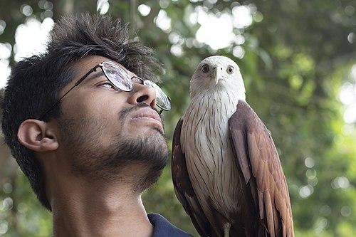 The Kerala Eagle (Unedited).jpg