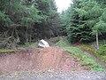 The Meteorite Stane - geograph.org.uk - 1435537.jpg