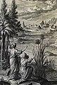The Phillip Medhurst Picture Torah 278. Moses in the bulrushes. Exodus cap 2 v 3. Friderich.jpg