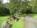 The Picnic Site at Dalcraig - geograph.org.uk - 574097.jpg