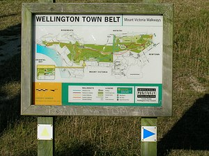 Wellington town belt - Image: The Start of our Walk (5158337)