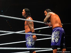 The Usos - The Usos in November 2013