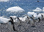 The World Factbook - Antarctica - Flickr - The Central Intelligence Agency (4).jpg