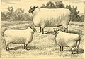 The breeds of live stock, and the principles of heredity (1887) (14778316291).jpg