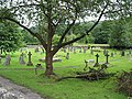 The churchyard at All Saints, Longhope - geograph.org.uk - 487152.jpg