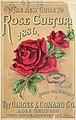 The new guide to rose culture (16999516535).jpg