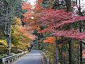 The way to Tsumago from Nagiso - panoramio.jpg