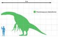 Therizinosaurus scale.png