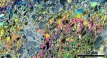 Siilinjärvi carbonatite - Wikipedia