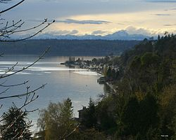 Vista de Burien des de Three tree point
