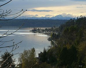 Three Tree Point in Burien
