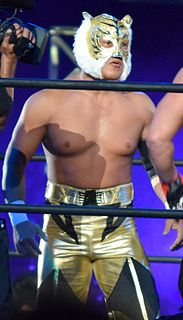 Tiger Mask (professional wrestling) persona of several Japanese professional wrestlers