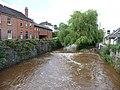 Tiverton , The River Lowman - geograph.org.uk - 1410604.jpg