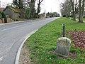 To New Buckenham 4 - geograph.org.uk - 1196844.jpg