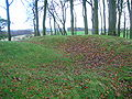 Top of Castle Hill - Eaglesham.JPG
