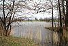 Torfstichsee April 2012a