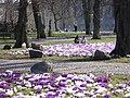 Town Hall Park (spring).jpg