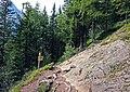 Trail and rock.jpg