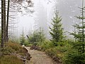 Trail near Sonnenkappe 16.jpg