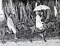Travelling on the Grand Trunk Road, Riding a native TAT (Pony).jpg