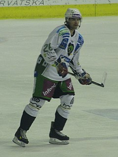 Travis Brigley Canadian ice hockey player