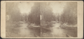 Trenton, N.Y., above the Alhambra, from Robert N. Dennis collection of stereoscopic views.png