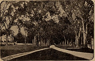 Stratford, Connecticut - Street of the Triple Elms, as seen in the 1890s