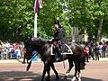 Trooping the Colour 2006 - P1110053 (169154061).jpg