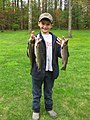 Trout caught at the Fishing event (5726805030).jpg
