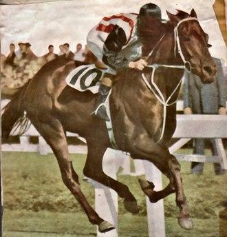 Tulloch (horse) - Tulloch