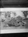 Two Indians seated on an elephant, with the body of a panther tied across the elephant's back ATLIB 305953.png