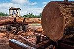 USAID Measuring Impact Conservation Enterprise Retrospective (Guatemala; Rainforest Alliance) (25433453187).jpg