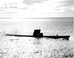 USS Cusk SS-348;0834809.jpg
