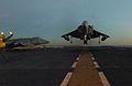 US Navy 051117-N-1467K-004 An AV-8B Harrier conducts a vertical landing on the flight deck of the amphibious attack ship USS Peleliu (LHA 5).jpg