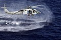 US Navy 090416-N-9150R-255 A search and rescue swimmer jumps from an MH-60S Sea Hawk helicopter.jpg