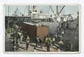Unloading Bananas from Steamer, New Orleans, La (NYPL b12647398-69700).tiff