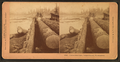 Unloading logs, Puget Sound, Washington, by Kilburn, B. W. (Benjamin West), 1827-1909.png